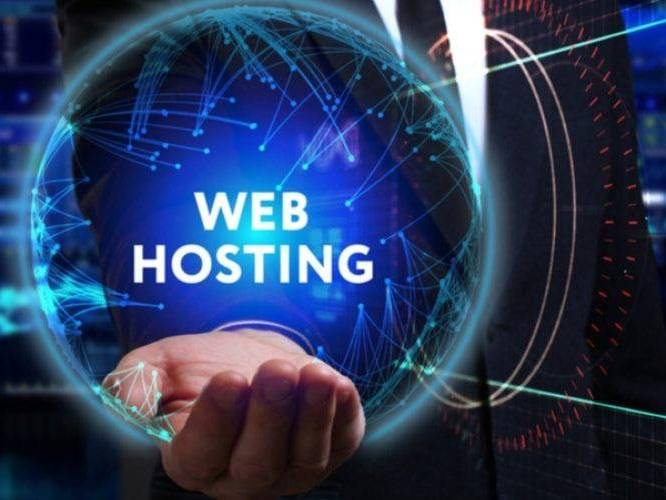 Understanding the Key Elements of Web Hosting | Know Your Hosting Needs